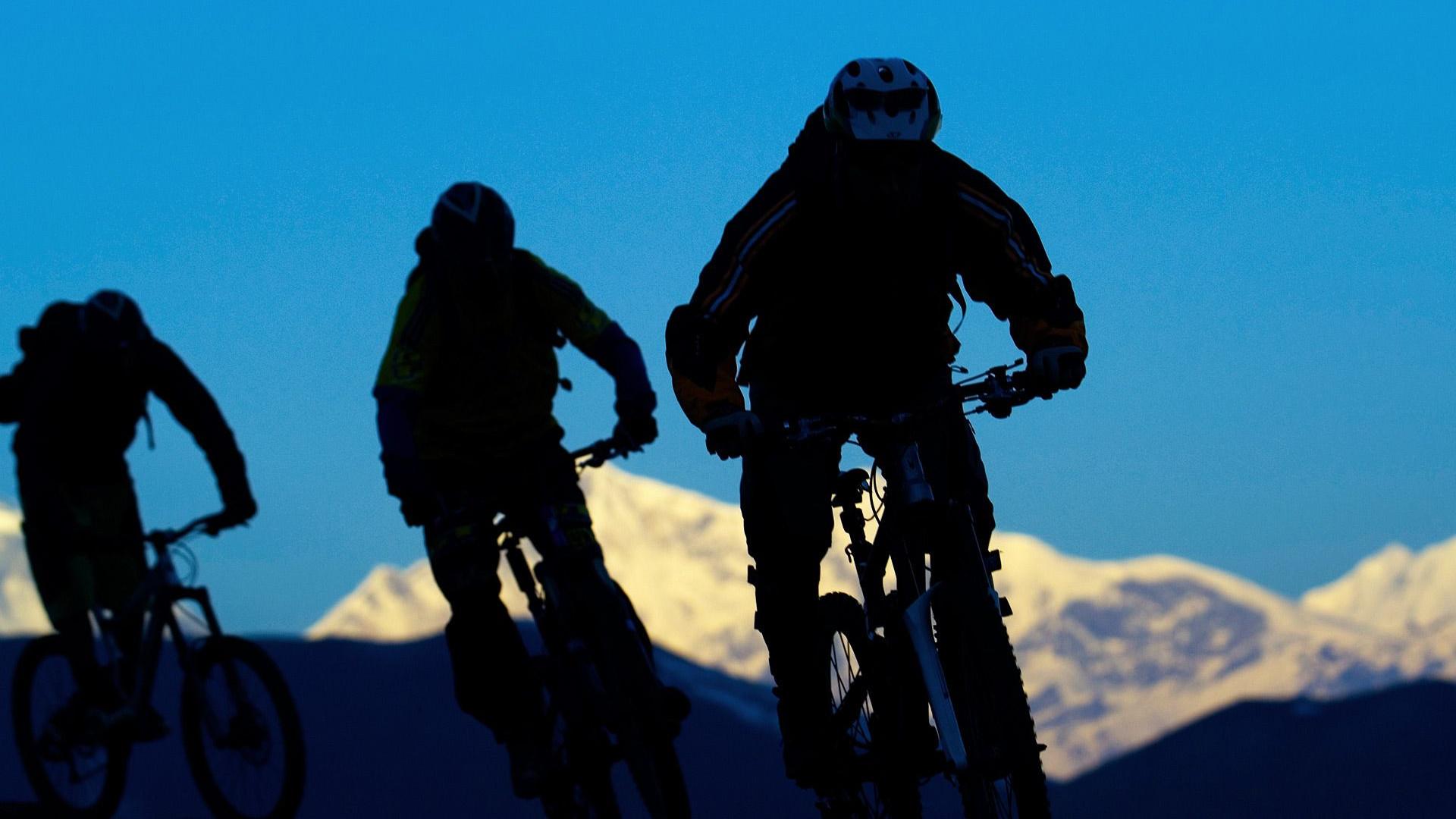 Bikes Silhouette