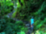 Mountain bike rider, riding through lush forest in Annapuna region, Nepal