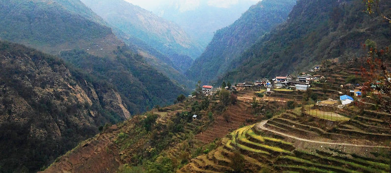 Terraced fields and trail in Annapurnas