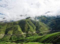 Road winding through the hills of Tibet