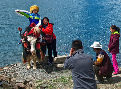 Sitting on a yak at Yamdrok-tso Lake, Tibet