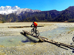 bikes crossing logs_edited.jpg