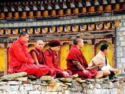 monks on fence.jpg