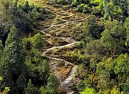 Long set of steps up mountainside in Nepal