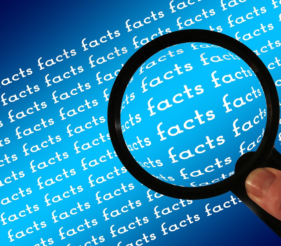 What are facts?