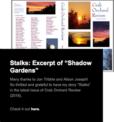 Stalks-Expert.png