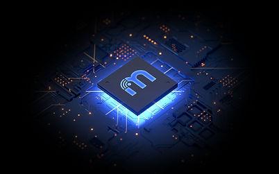 special-chip.jpg