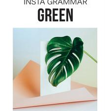 INSTA GREEN BOOK