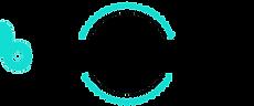 BrandName Logo 2021 BLACK AND BLUE.png