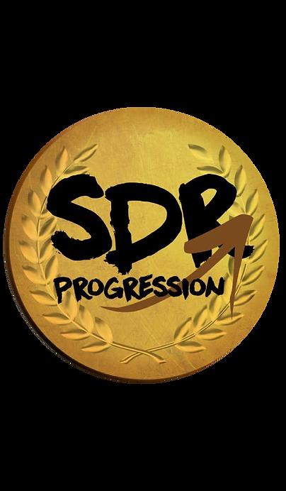 sdrpro1.png