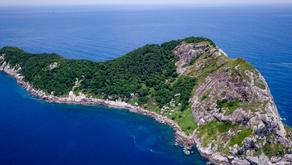 THE SNAKE ISLAND !