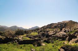 Drymalia's Hike
