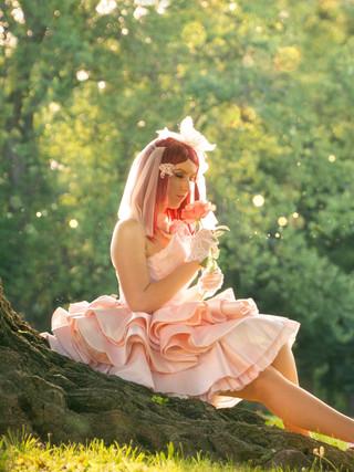 Bride Rose - Tales of Zesteria