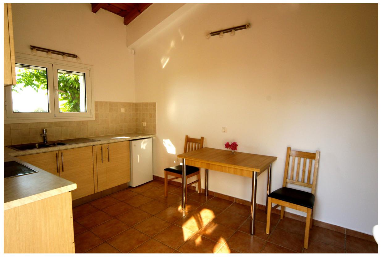 Kitchen & Living area of Dafni