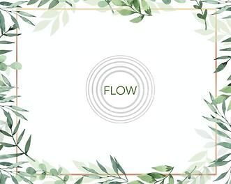 FLOW FINAL.png
