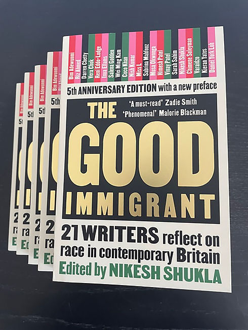 The-Good-Immigrant-comp-pic.jpg