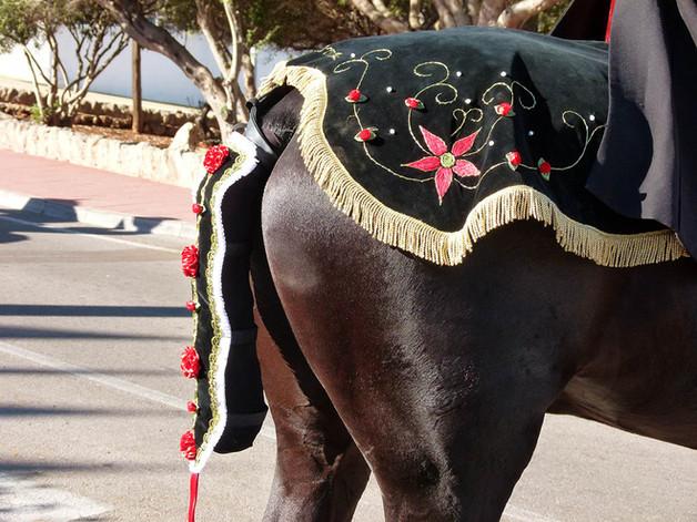 cheval de minorque