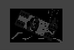 frame_11.jpg