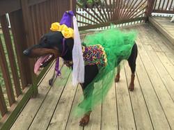 Bella dress up