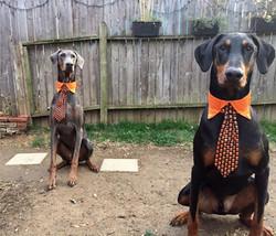 Halloween Todd and Merrill