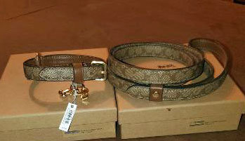 09 Coach collar and leash for smaller dog
