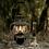 Thumbnail: Barebones Railroad Lantern Olive Drab