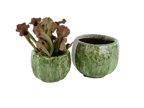 PROVENCAL PLANTER FOREST GREEN SMALL