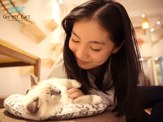 Build a Mindful Connection With Your Pet | 与你的宠物构建正念连接