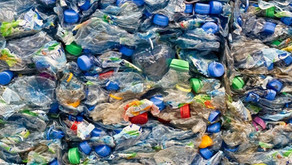Companies are beginning to fight plastic waste