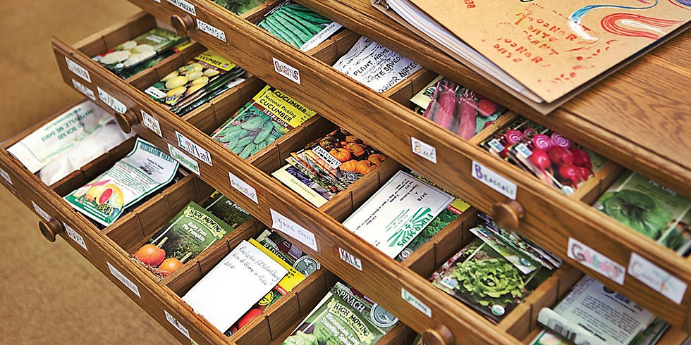 Seed Library Celebration