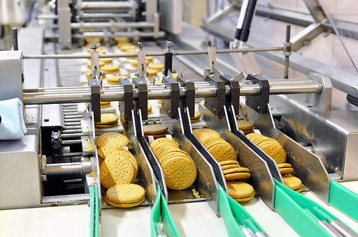 conveyor belt with biscuits in a food fa