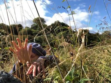 Exploring Nature Through The Senses