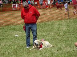 Dog Fest, 2016