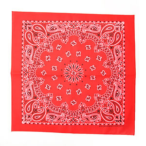 HAV A HANK Traditional Paisleys Bandannas Red