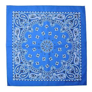 HAV A HANK Traditional Paisleys Bandannas Royal Blue
