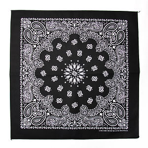 HAV A HANK Traditional Paisleys Bandannas Black
