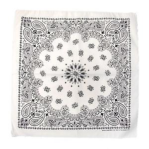 HAV A HANK Traditional Paisleys Bandannas White