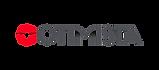 logo-o-otimista_edited.png