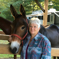 "Part 1: ""Action for Equestrian Trails in Pennsylvania and Beyond"