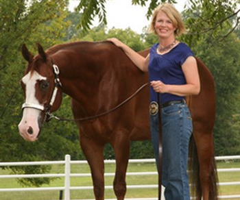 Using Learning Style Preferences to Teach More Effective Riding Lessons