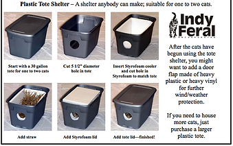 SHELTER IDEAS_edited.png