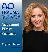 Advanced Wrist Summit.png