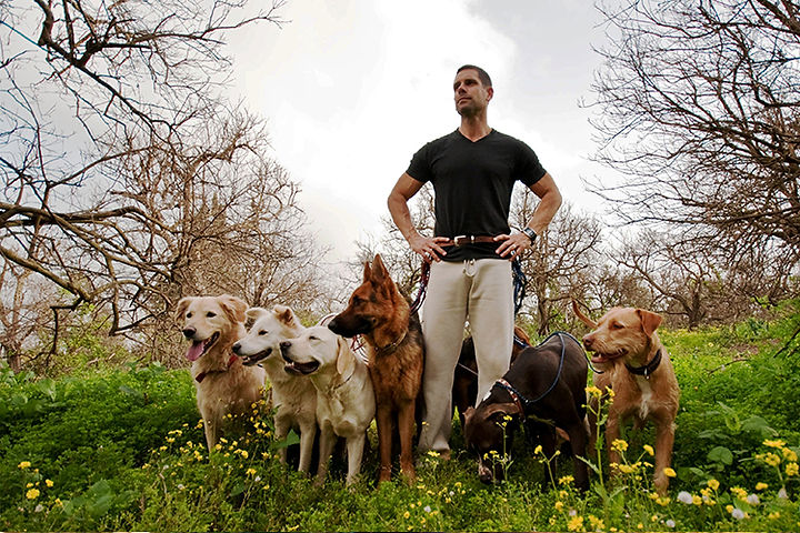 dog-trainer-1.jpg