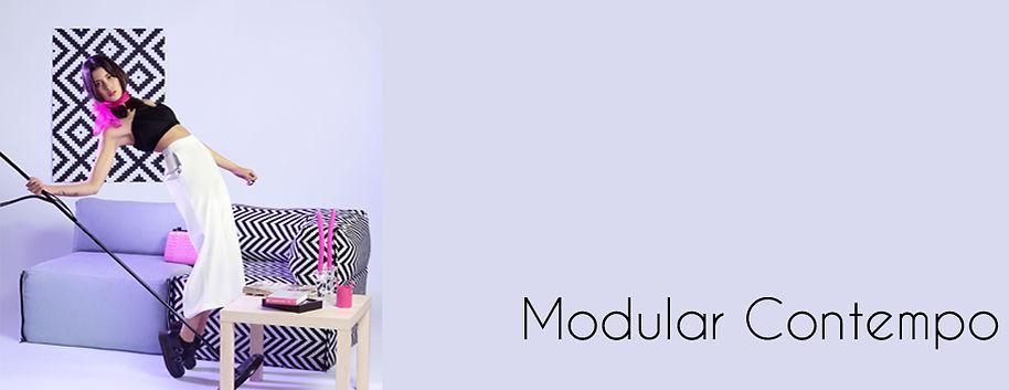 modular Banner 1 approved.jpg