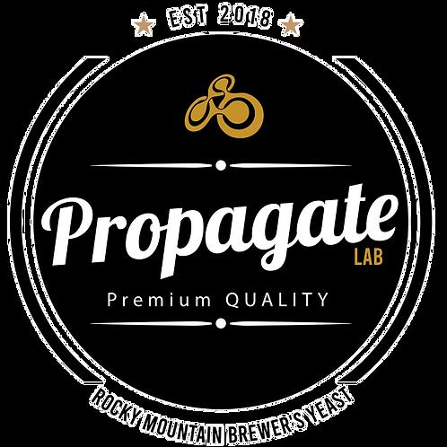 Propagate Logo T-Shirt