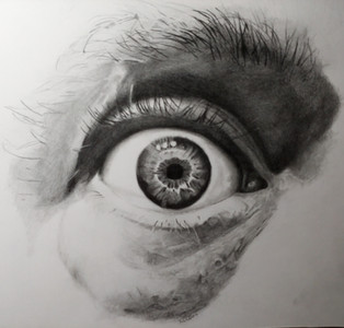 The Eye Test.jpg