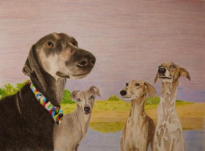 The Long Dogs - Mar 2021.jpg