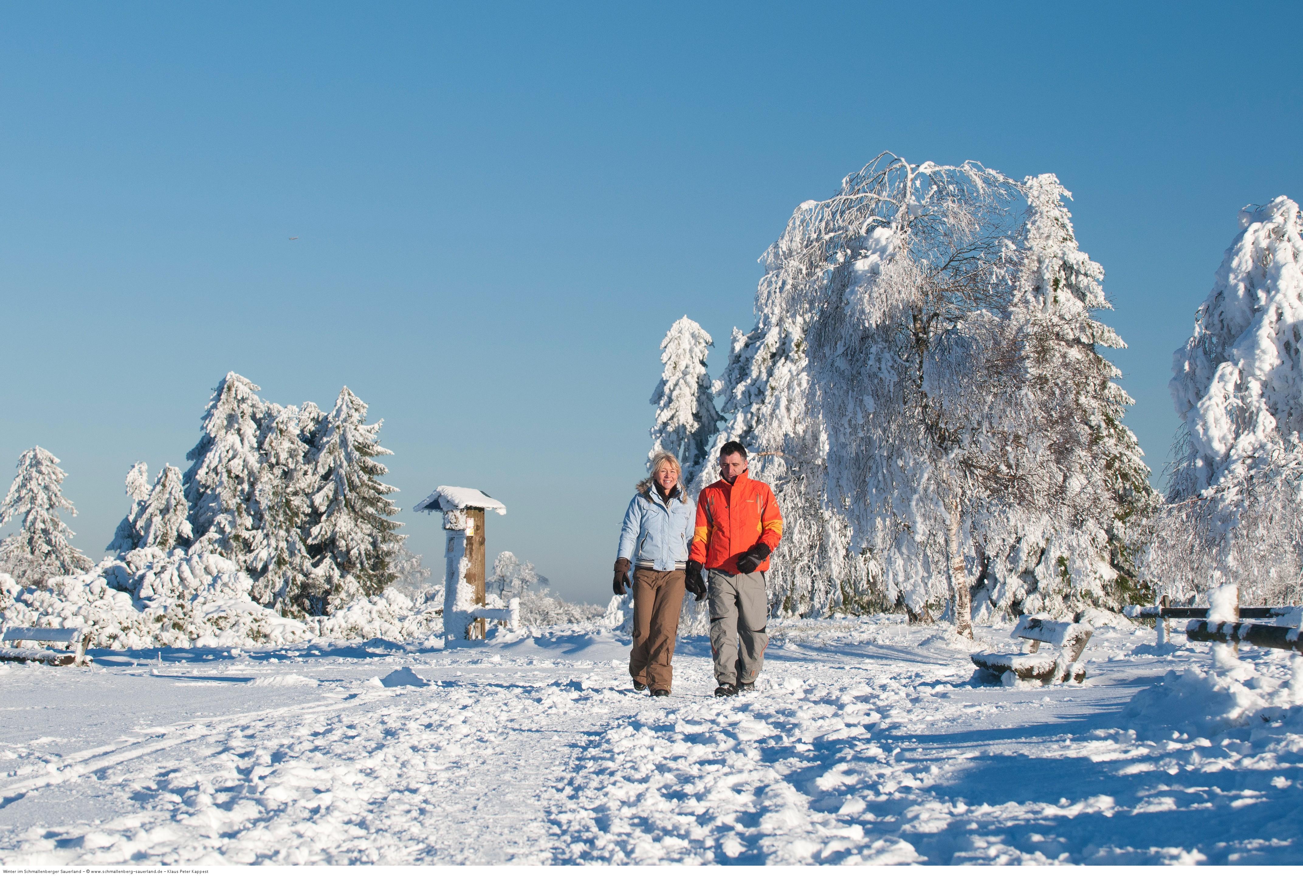 Winterwandern-im-Sauerland-Schmallenberg