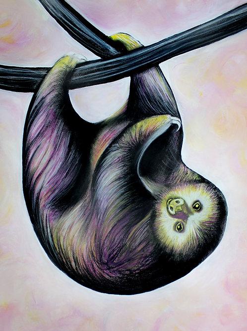Sloth - Print