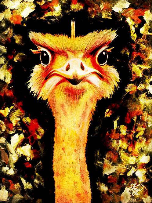 Ostrich - Print